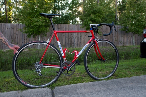 Shane's amazing Merckx.